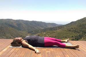 the 5 principles of yoga  alice radha yoga